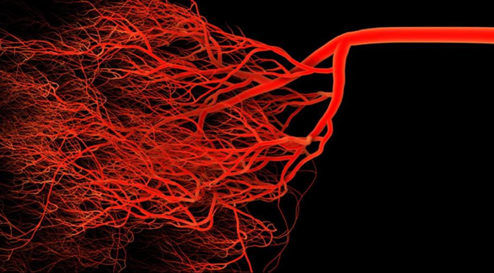 Är forskningen om mikrocirkulation en utmaning?